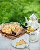Rotura del café o de té en el jardín Imagen de archivo