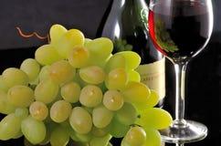 Rotwein in den fougeres und eine Weintraube Lizenzfreies Stockfoto