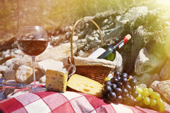 Rotwein, Käse und Trauben dienten an einem Picknick Lizenzfreies Stockfoto