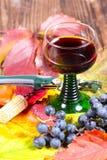 Rotwein und Korkenzieher stockfoto