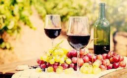 Rotwein und reife Trauben auf Tabelle im Weinberg lizenzfreie stockbilder