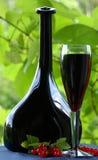 Rotwein und rote Johannisbeere Lizenzfreies Stockbild