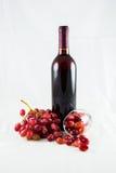 Rotwein und Traube lizenzfreie stockfotografie