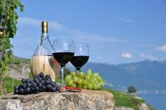 Rotwein und Trauben Stockfoto