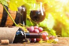 Rotwein und Trauben stockfotos