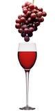 Rotwein und Trauben Stockbild