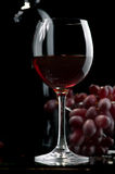 Rotwein und Trauben Lizenzfreies Stockfoto