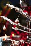 Rotwein und Zweig mit Eis Lizenzfreie Stockbilder