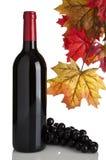 Rotweinflasche, Trauben und Fallblätter Stockfoto