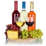 Rotweinkäse-Weintraubequadrat Rose lokalisiert auf Weiß stockfotografie