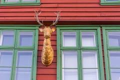 Rotwild, Bergen Stockfotos