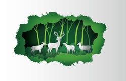 Rotwild im Wald Stockbild