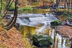 Rotwild lecken Nebenfluss-Wasserfall lizenzfreies stockfoto