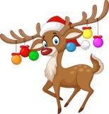 Rotwild mit Weihnachtsball Lizenzfreie Stockfotos