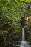Rotwild-Sprungs-Fälle, Pennsylvania Lizenzfreies Stockfoto