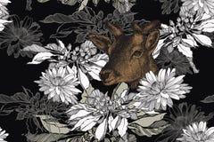 Rotwild und nahtloser mit Blumenhintergrund mit Chrysanthemen Von Hand gezeichnet, Vektorillustration lizenzfreie abbildung