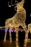 Rotwilddekorationslichter für Weihnachten und neues Jahr lizenzfreie stockbilder