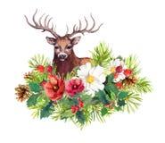 Rotwildtier, Winter blüht, Tannenbaum, Mistelzweig Aquarell für Weihnachtskarte Stockfotografie