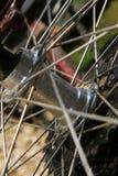 Roue de bicyclette Images libres de droits