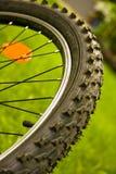 Roue de bicyclette Photo libre de droits