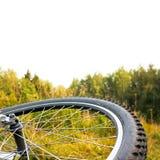 Roue de bicyclette au coucher du soleil d'automne, partie supérieure d'isolement Photographie stock libre de droits