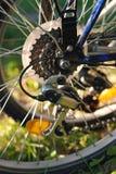 Roue de bicyclette avec des groupes, plan rapproché Photographie stock
