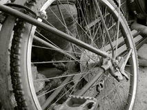 Roue de bicyclette de cru Photos libres de droits