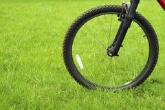 Roue de bicyclette sur le vert Photo libre de droits