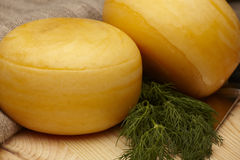 Roues de fromage Photos libres de droits
