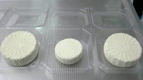 Roues de fromage blanc traditionnel banque de vidéos