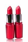 Rouge à lievres rouge Photographie stock libre de droits