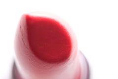 Rouge à lievres rouge Photos libres de droits