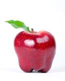 rouge délicieux de pomme Image libre de droits