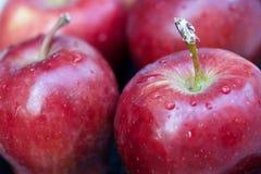 Rouge d'Apple Photo libre de droits