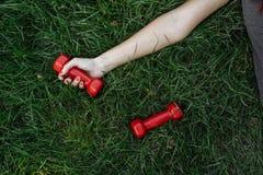 rouge d'haltère images stock