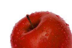 rouge d'isolement par rosée de pomme Images libres de droits