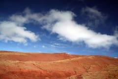 rouge de cordon photos libres de droits
