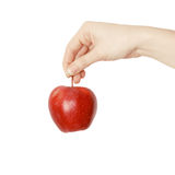 rouge de fixation de main de pomme images stock