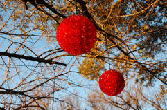 Rouge de lumières de Noël dehors Image stock