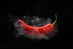 rouge de poivre chaud Photographie stock
