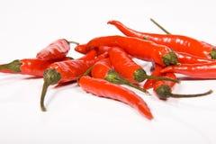 rouge de poivre chaud de /poivron Photographie stock