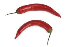 rouge de poivre de /poivron Photo libre de droits