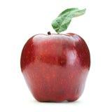 rouge de pomme Photographie stock libre de droits