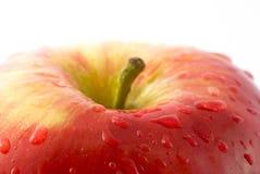 rouge de pomme Photo libre de droits