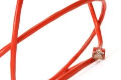 rouge de réseau informatique de câble Images stock