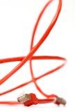 rouge de réseau informatique de câble Photos stock