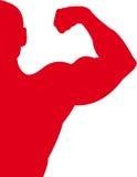 Rouge de sport Photos libres de droits