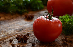 Rouge de tomate Photo libre de droits