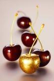Rouge et fleurs de cerisier d'or sur un fond clair Images libres de droits