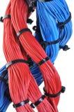 Rouge et mélange bleu des câbles de réseau Image stock